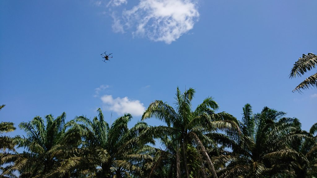 A drone equipped with an LCTF camera flies over an oil palm plantation in Malaysia as part of a joint project with Hokkaido University.