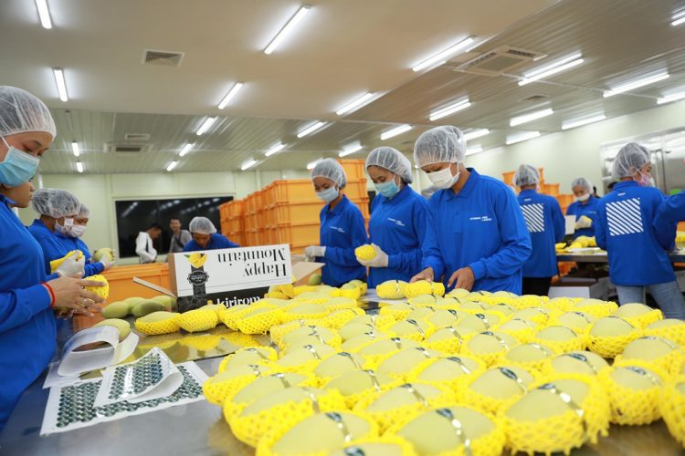 Sanshu Sangyo Co. contributes to food safety with equipment that is indispensable for quarantine inspections on fruit before it is shipped from its country of origin.